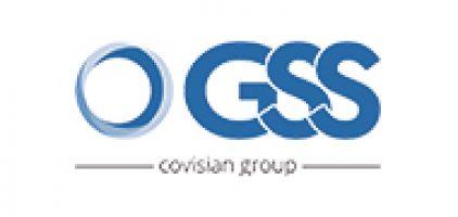 Grupo GSS